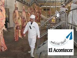 BPU en crecimiento exponencial de cabezas bovinas faenadas y volumen de exportación durante la última temporada
